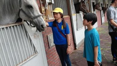 말과 함께